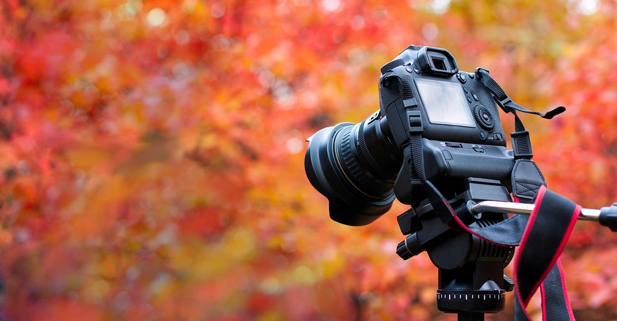 How To Get Perfect Fall Photos When Mother Nature Won't Cooperate