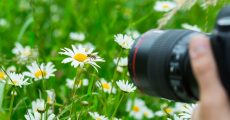 The Best Way To Start Exploring Macro Photography Without Breaking The Bank