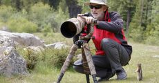 4 Essential Items That Will Help You Capture Outstanding Nature And Wildlife Images