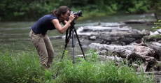 The Best Nature And Landscape Photography Tips For Beginners And Advanced Hobbyists