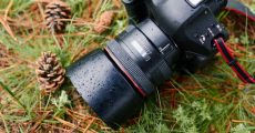 How To Get Tack Sharp Images And Say Goodbye To Blurry Photos For Good