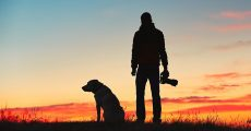 How A Dog Can Help You Become A Better Photographer