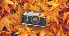 Top 3 Tips For Astonishing And Colorful Fall Photography
